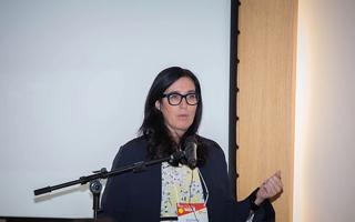 Palestrante do Encontro Internacional sobre Clima e Saúde realizado em Brasília